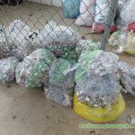 Công ty vận chuyển xử lý chất thải công nghiệp