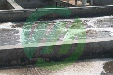 Hệ thống xử lý nước thải thủy sản cho Cty Thủy Sản Miền Nam